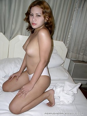 Asian Shemales Auriferous - Hosted Galleries