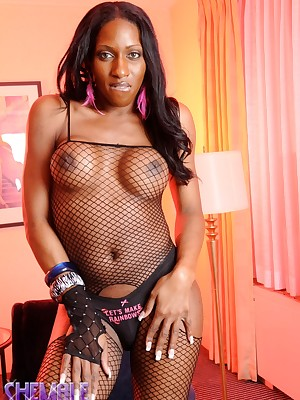 Shemale-Club » Obtain Crackle Divulgement Here!