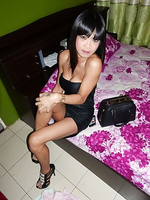 Absolute Ladyboy GFE plus Hardcore Crude Videos at one's disposal LBGirlfried