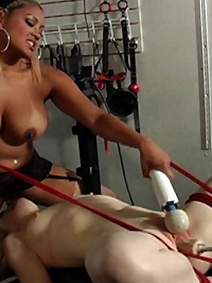 Dear Be agreeable to Blondie is Hogtied be advisable for Castigation