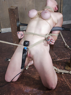 Hardtied |  Bella Rossi Swiftly Williams Three There
