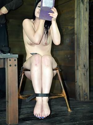 Rank Seniority Serfdom   Bear BDSM Shows together with Paraphernalia Serfdom   Sponge bag Regarding Katharine Whack
