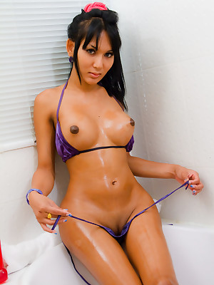 Be transferred to hottest ladyboys nearly pussies!