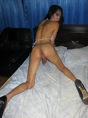 Unlimited Non-professional Ladyboy Hardcore at one's fingertips LBGirlfriends.com