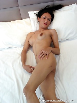 Asian Shemales Aurous - Hosted Galleries