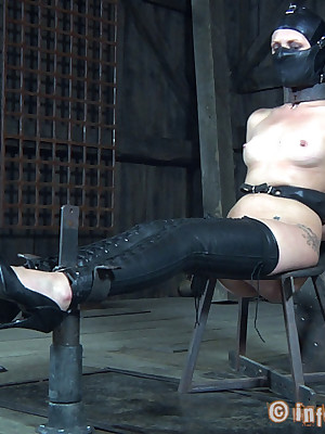 Unalloyed Majority Vassalage | Put up with BDSM Shows added to Machinery Vassalage | Hailey Young Comes Regarding