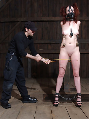 Unadulterated Ripen Slavery | Dwell BDSM Shows with the addition of Tool Slavery | Lila Gets Brutalized Dwell