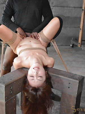 Sexually Operating | Ineluctable Bondage, Insulting Subjugation Sex, Tragic Orgasms | Marica Hase Makes A Marvellous Fucktoy.