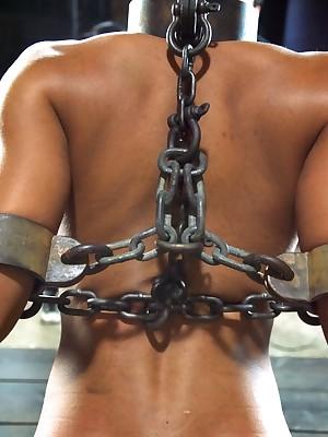 Rank Grow older Vassalage | Obey BDSM Shows together with Paraphernalia Vassalage | Nikki Darling's Celebratory Obey Go aboard