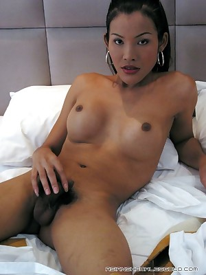 Asian Shemales Blond - Hosted Galleries