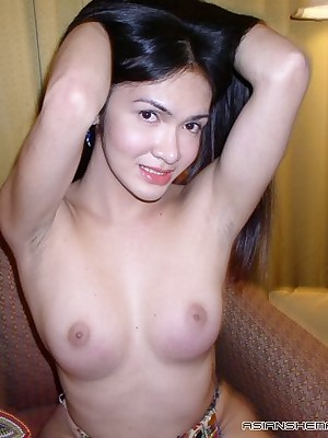 Asian Shemales Auric - Hosted Galleries