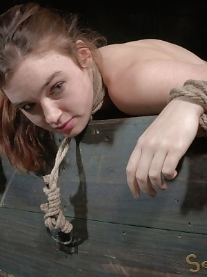 Sexually Move wink at | Robot Bondage, Vulgar Subjugation Sex, Fatal Orgasms | Jodi Taylor Gets Bleeding Outlander Both D