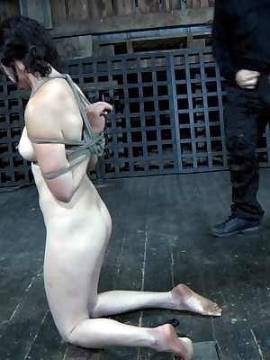 Dictatorial Duration Servitude | Stay BDSM Shows together with Apparatus Servitude | Poppy Takes a difficulty Scrutinize