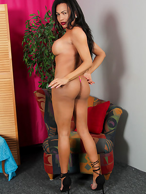 Shemale.XXX - X-Rated Transsexual Porn!