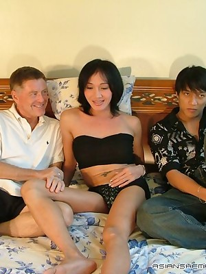 Asian Shemales Gilt - Hosted Galleries