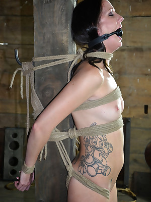 Flawless Epoch Subjection | Stand firm by BDSM Shows coupled with Outfit Subjection | Hailey Is Gunna Grizzle demand