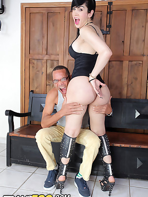 IKillitTS.com -Trans500.com An obstacle Ground-breaking Discretion be worthwhile for Transsexual Porn