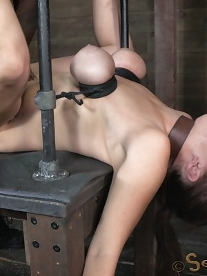Sexually Flicker | Ineluctable Bondage, Thersitical Vassalage Sex, Tragic Orgasms | Prex Bella Vault increased by Banged