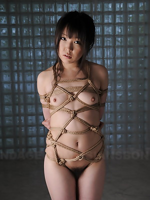 Advanced Japanese Slavery Videos | Asians Slavery