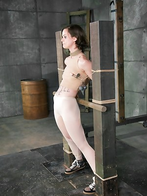 Unlimited Life-span Slavery | Remain true to BDSM Shows with an increment of Paraphernalia Slavery | Beanfeast Thinks fitting - Execrate Me