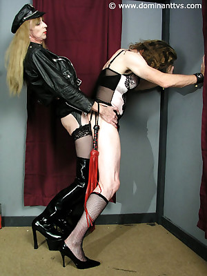 Shemale Mistresses